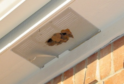 Dirty or clogged soffit vent